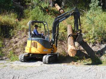 Rented machine for harvesting large trees