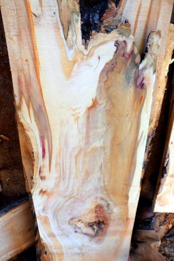 Box Elder slab