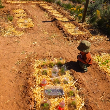 Our toddler learning early about sustainable living