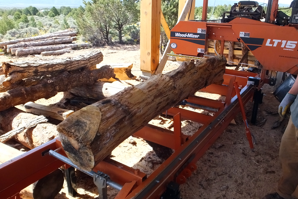 Salvaged Scotch pine from Taos, NM