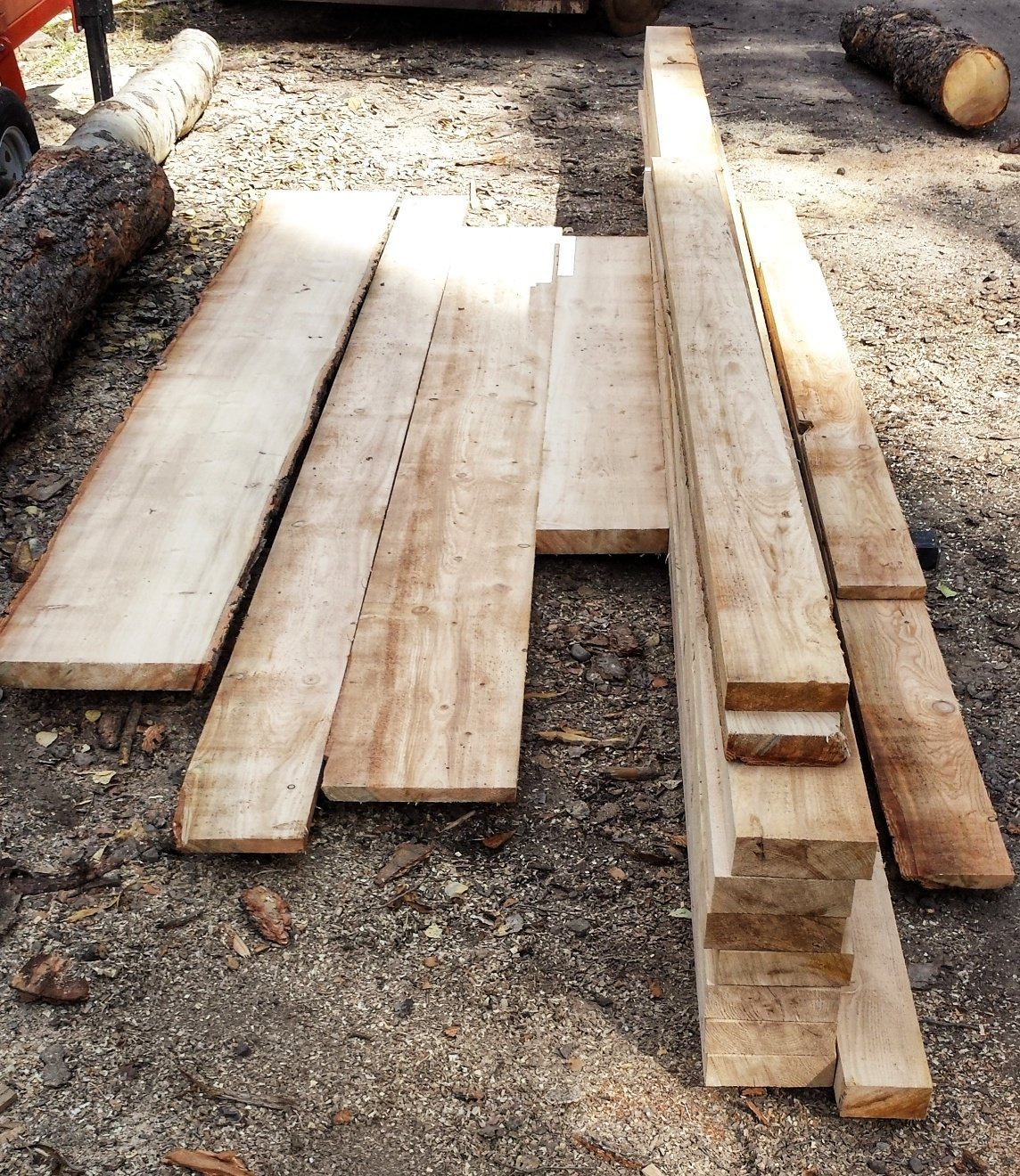 types of wood lumber lives in a tree fruitful tree 30565